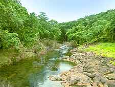 Picture of the Sanjay Gandhi National Park