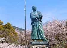 Photo showing springtime cherry blossom in Kazagashira Park