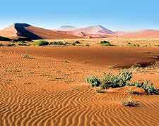 Namib Naukluft National Park landscape view