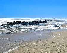 Skeleton Coast picture