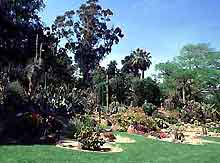 Naples Botanical Gardens