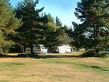 Image of camping / municipal campsite in the New Forest, Hampshitre, England, UK