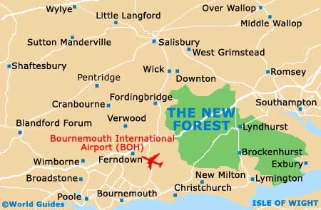 Small New Forest Map
