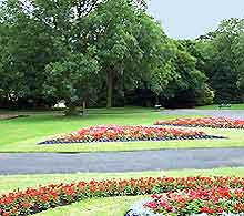 Newcastle Parks and Gardens