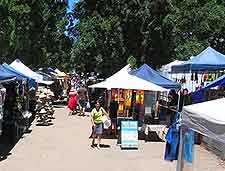 Picture of local market