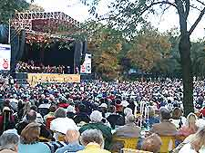 Picture of crowds gathered at local concert