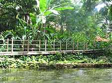 Photograph showing the Coyaba River Gardens