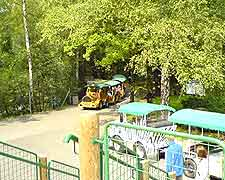 Photo of train ride through the Zoological Gardens