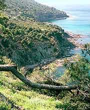 Akamas Peninsula picture