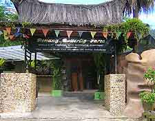 Butterfly Farm picture, showing entrance