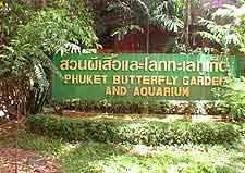 Photo of the Phuket Butterfly Garden and Insect World