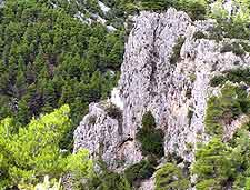 Mount Parnitha view