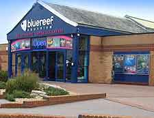 Blue Reef Aquarium image