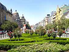 Photo of Wenceslas Square