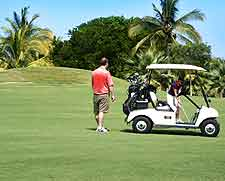 Image showing golfer and buggy