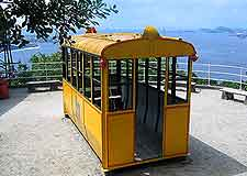 Summer picture, showing yellow streetcar