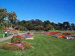 San Francisco Parks and Gardens