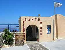 Photo of the Santo Winery