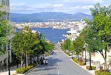 View of Hakodate