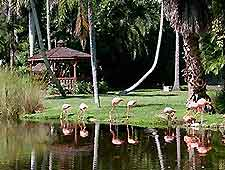 Sarasota Tourist Attractions And Sightseeing Sarasota Florida Fl Usa