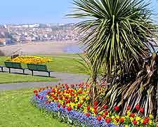 Summer photo of cliff top gardens
