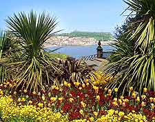 Further image of the colourful gardens on the cliff tops