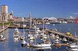 Seattle Sea Tac Airport Sea Car Rental Hire Car Rental At