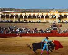 Seville Sports and Outdoor Activities