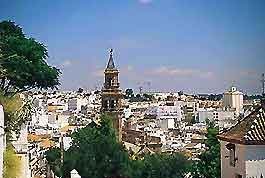 Seville Life and Travel Tips