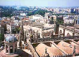 Seville Business Tips