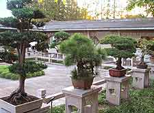 Image of the Botanical Gardens
