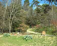 Photograph taken at the Orto Botanico (Botanical Gardens)