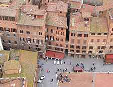 Picture taken from the top of the Torre del Mangia