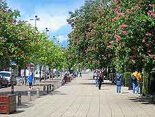 Photo of town centre shoppers