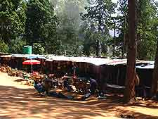 Picture of traditional market in Mbabane, the capital city