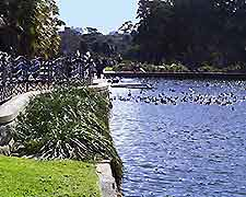 Sydney Parks and Gardens