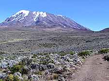 Photo of Mount Kilimanjaro, Tanzania, Africa