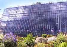 Image of the University Botanical Gardens (Botaanikaaed)