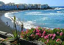 Photograph Jardin Beach along Tenerife's Puerto de la Cruz coast