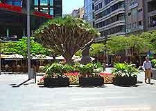 Snapshot of Tenerife shopping area