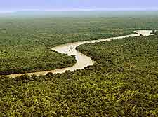 Panoramic picture of the River Gambia National Park