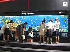 Photo of the Ginza's Sony Building aquarium