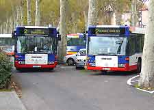 Toulouse Airport (TLS) Directions and Car Rental: Photo showing buses in the city centre