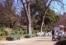 Picture of Le Jardin des Plantes fountain