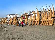 Picture of Huanchaco Beach and its caballitos de totora