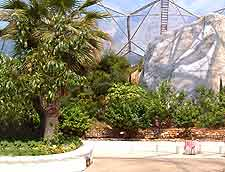 Interior photo of the tropical dome at the Eden Project