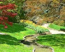 Photo of the Orto Botanico (Botanic Gardens)