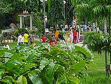Gulab Bagh picture, showing the tropical gardens