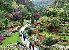 Victoria parks and gardens victoria british columbia bc canada victoria british columbia bc canada altavistaventures Choice Image