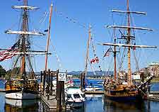 Harbourfront photo of traditional sailing ships